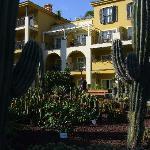 jardin de cactus à l'hôtel