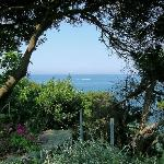 Garden and sea-view