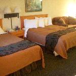 room 208
