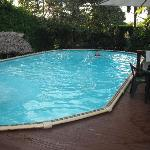 lovely swimming pool that was cleaned each morning