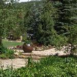 Betty Ford Garden