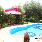 Piscine et Pergola de la Villa Aâlma à Marrakech