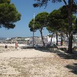 la spiaggia dalla pineta