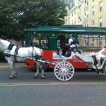 Or ride through town and get an educational tour