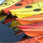 Reflecting on kayaks
