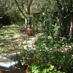Garden @ Casa del Sol