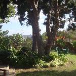 The grounds at Cheetah Lodge