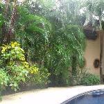 Un panorama des Villa 1 et 2 autour de la piscine centrale