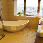 Ryumeikan Premuim suite