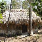 Cabaña for rent 1