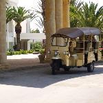 Beach Transport