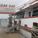 Dock of Scat Cat