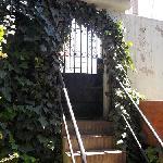 El Tuco の門