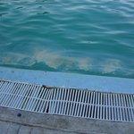 el agua de la piscina