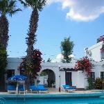 mimosa pool area