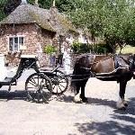 Cockington horse drawn cart