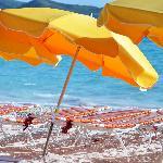 Famous Yellow Umbrellas
