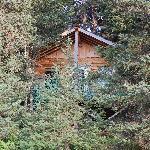 our hidden cabin
