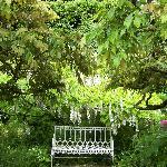 Photo of Hidcote Manor Garden
