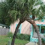 Tiki Palms Inn  www.travelisrequired.com