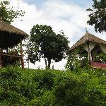 Elephant Lodge Foto