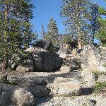 Rocks at campground