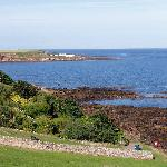 Reef of Crail