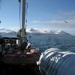 Herrliche Fahrt auf dem MS Langoysund