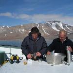 Whisky auf Gletschereis