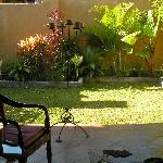 lovely secluded garden