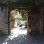 Puig de Pollenca Foto