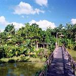 Sepilok Jungle Resort Foto
