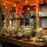 le jardin tropical maison