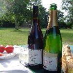 Local wine, cheese and tomato; a picnic in the grounds...a small piece of heaven on earth!