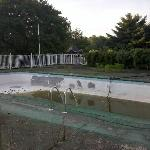 The lovely pool