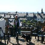 Views over Pwllheli
