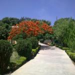 pathway of resort