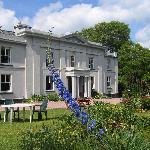 Enjoy a cream tea on the lawn of South Allington House