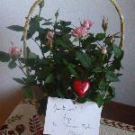 accoglienza fantastica per il nostro matrimonio