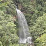 Cascada Tavida