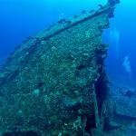 Mv Belama Shipwreck on Tranquility Island
