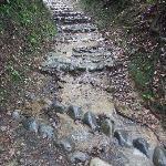 坂道は滝状態