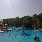 piscine derriere
