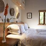 Paradise Cove Room