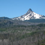 Mount Washington as viewed from the eastern slope of Santiam Pass