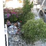 th garden