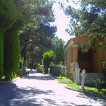view between villas