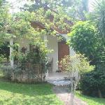 View of bungalow & garden