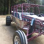 This is the Dune Buggy we rode on!