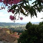 view from Piazza Garibaldi, Cortona